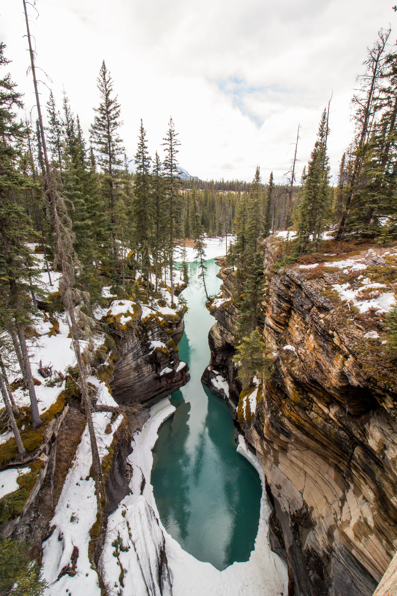 Athabasca-Falls, Icefield Parkway