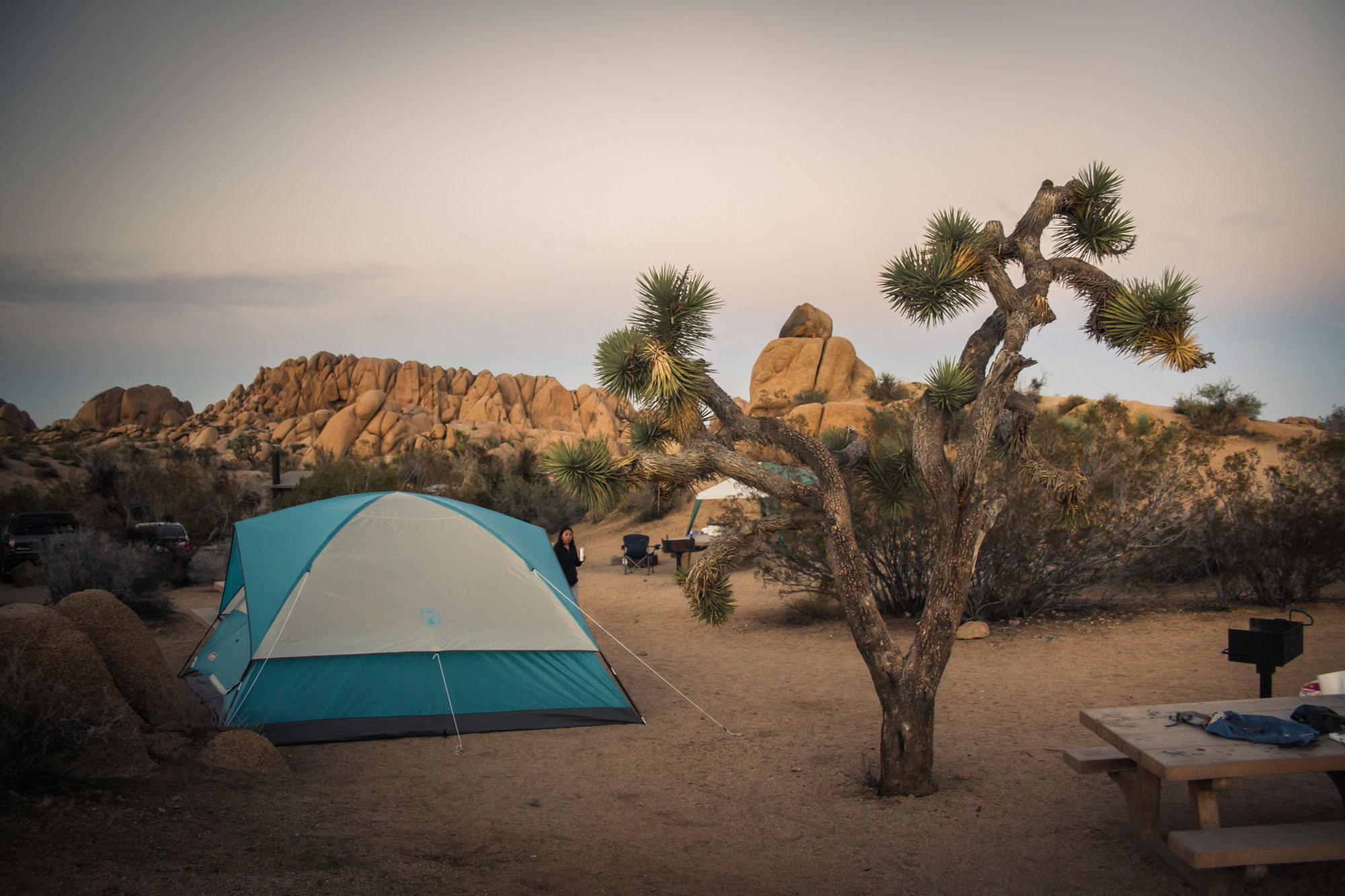 Campsite in Joshua Tree National Park.jpg