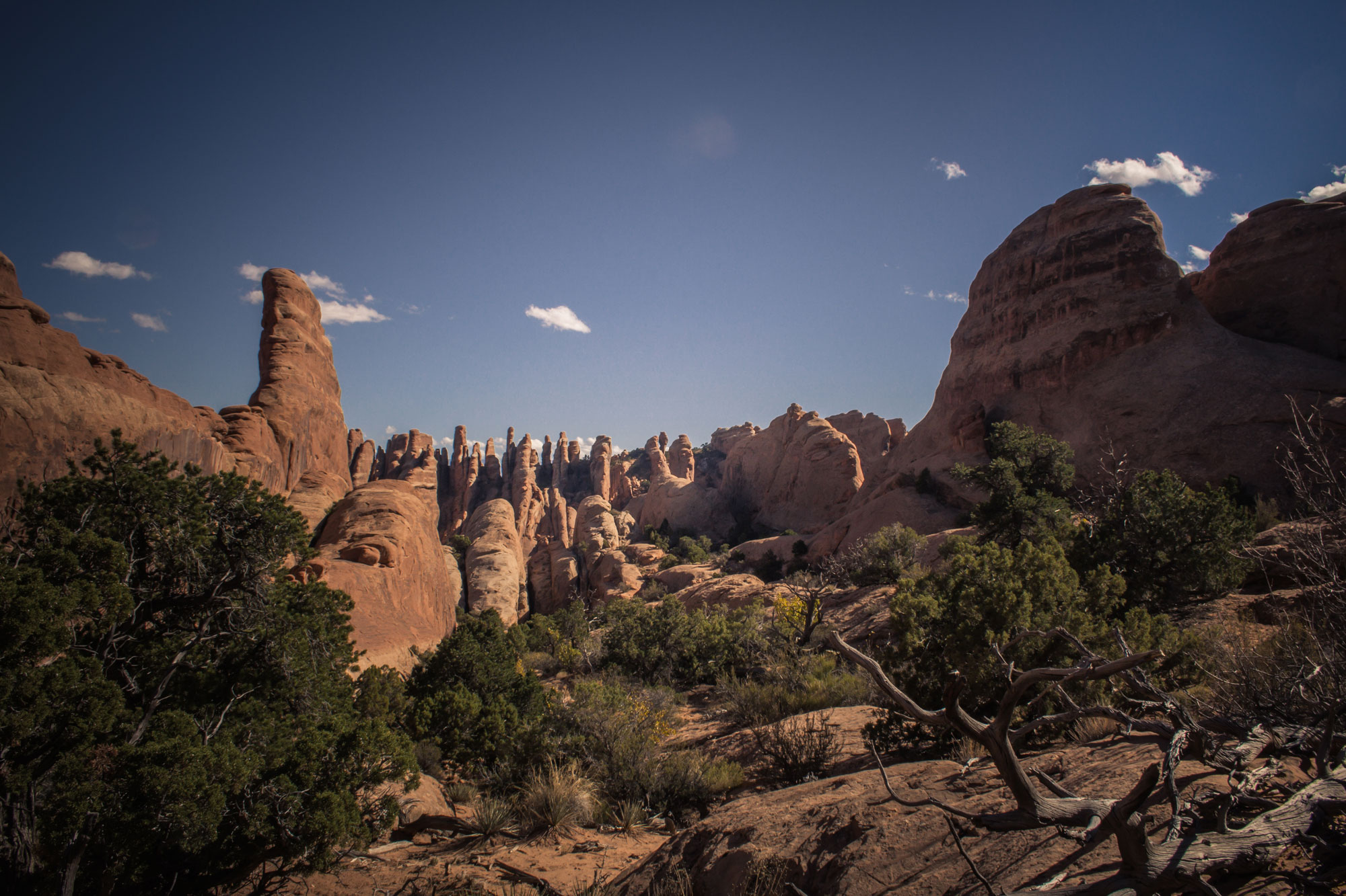 Devil's Garden Loop, Arches National Park