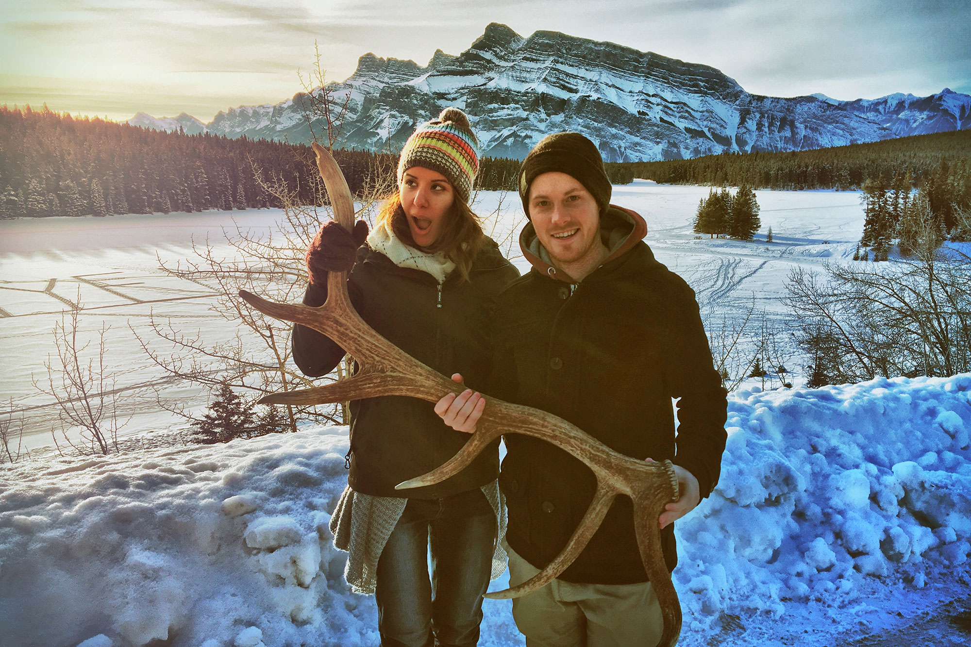 Discover Banff and Its Wildlife Tour by Discover Banff