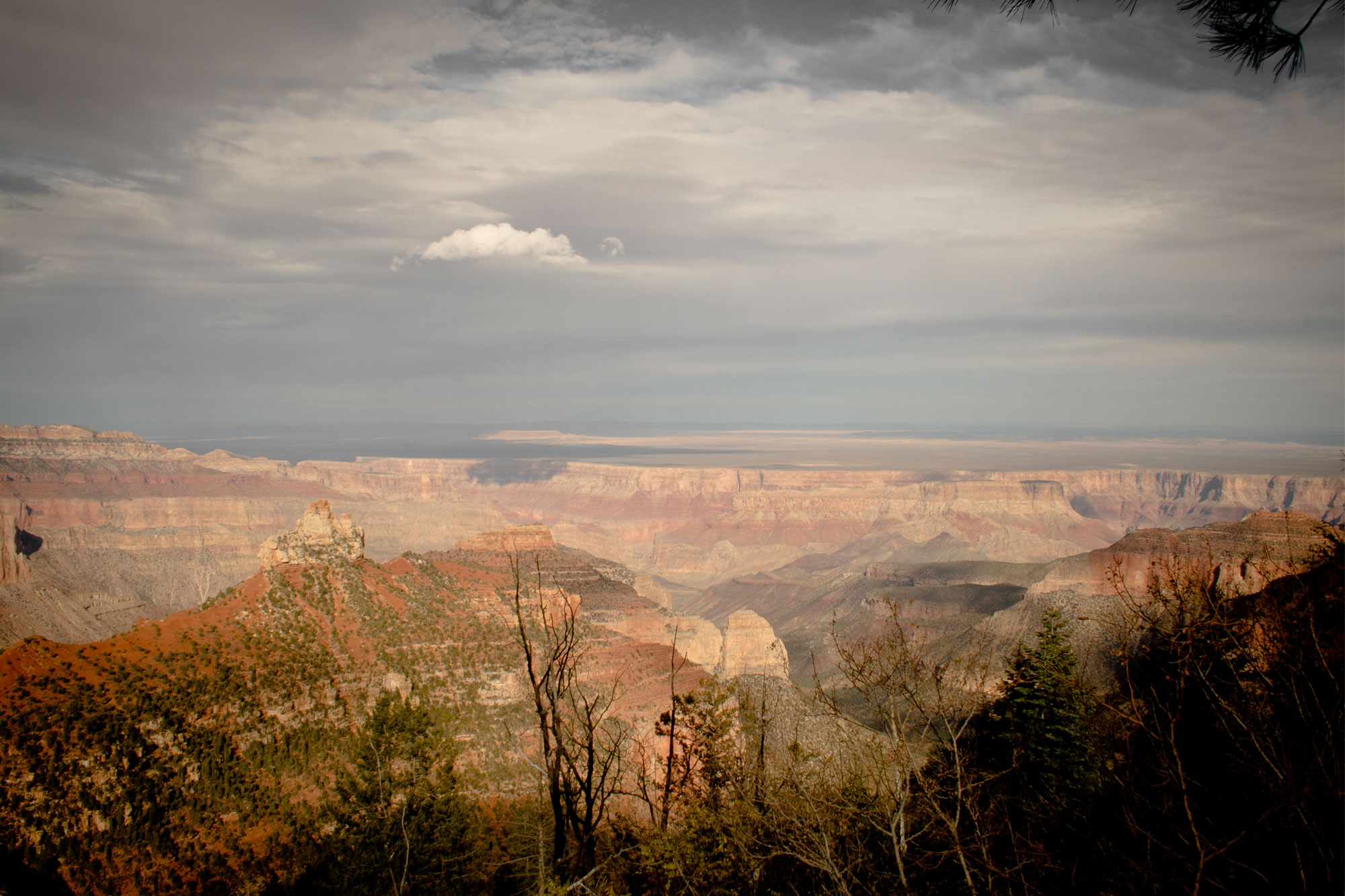 North Rim Grand Canyon National Park