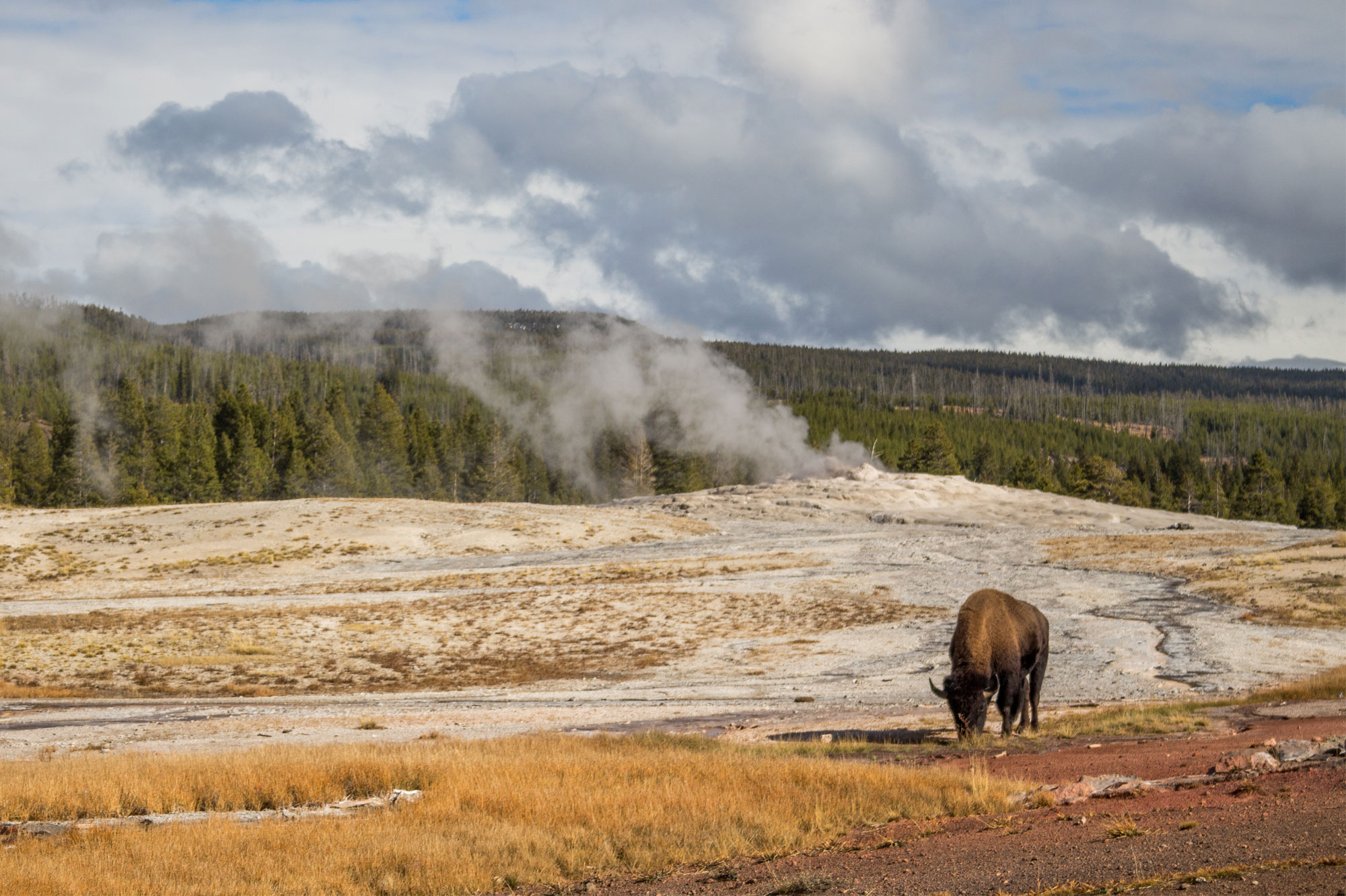Yellowstone, American National Parks.