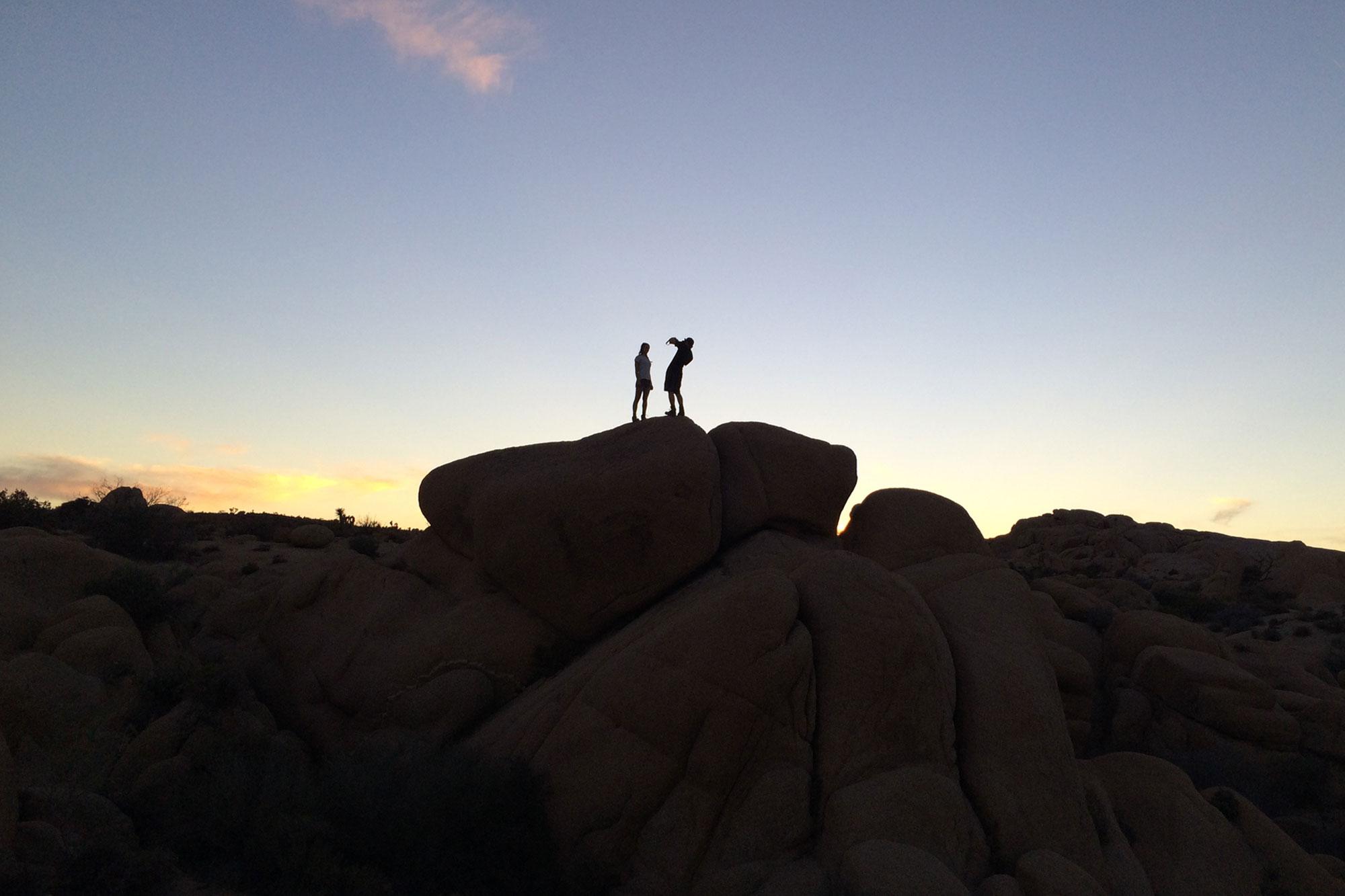 Sunset ,Joshua Tree National Park