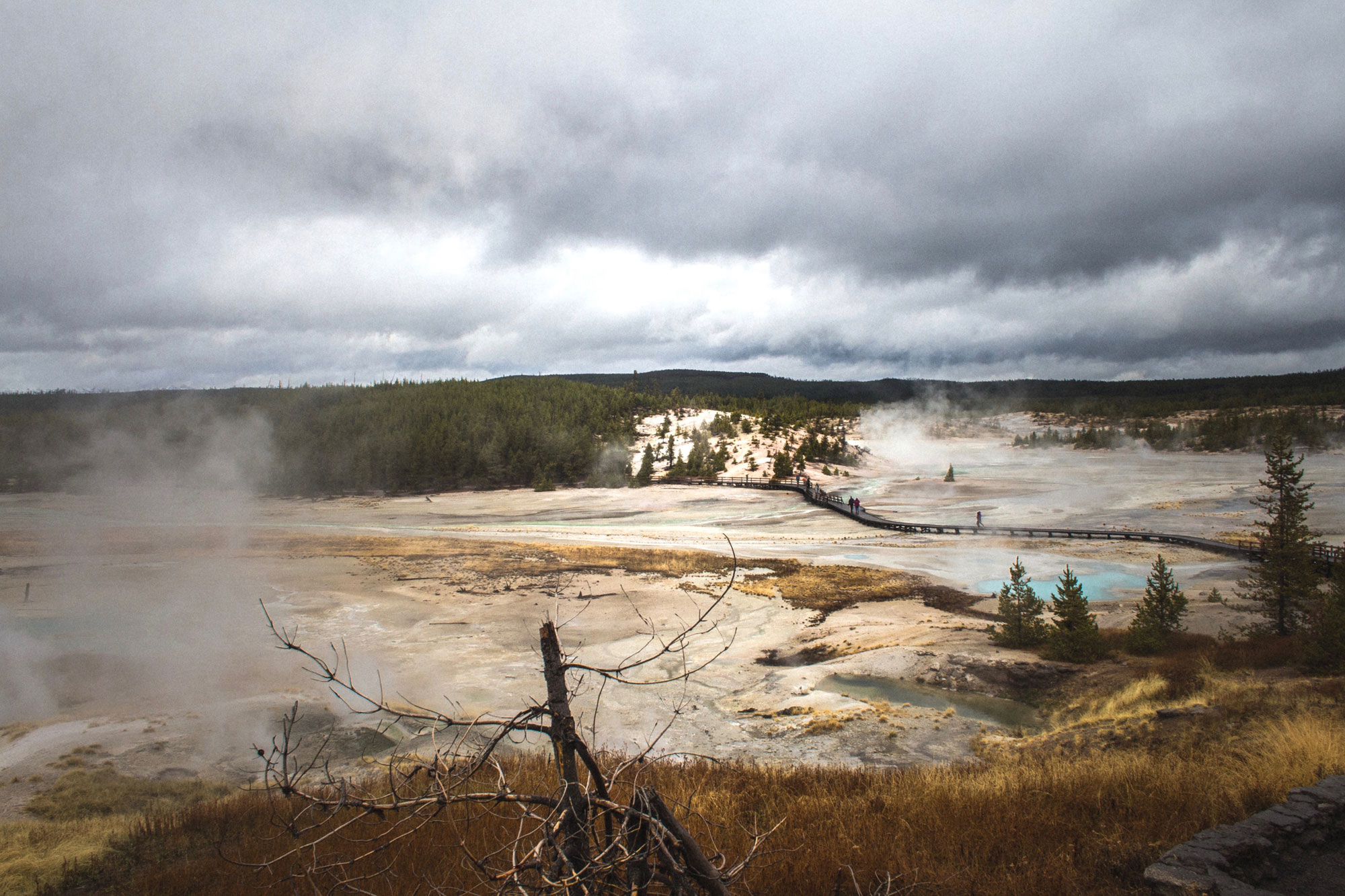 Thermals in Yellowstone National Park