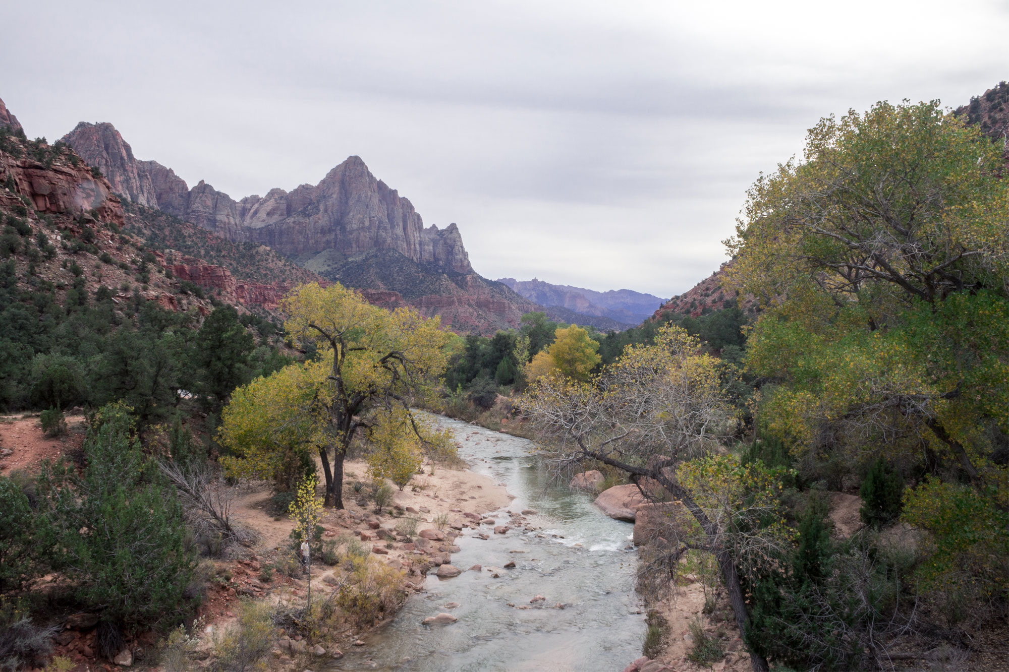 Virgin River from the bridge in Zion National Park